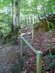 2016 Germany // Sauerland Hhenflug // (maerzbecher-Deutschland zu Fuss) Tags: trekking germany deutschland hiking natur trail nrw wandern wanderweg sauerland 2016 wanderwege fernwanderweg hhenflug weitwanderweg maerzbecher sauerlandhhenflug deutschlandzufus deutschlandzufuss