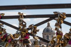 IMG_4660.jpg (mattlamprell) Tags: bridge paris france padlocks pontdesarts 2016