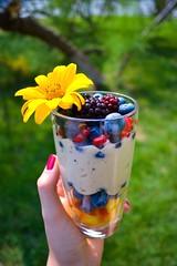 (Dianelishe) Tags: fitfood cleanfood vegetarian raw veganfood vegan tasty delicious health summerfood summer nanaicecream banana blueberry berry berries fruits