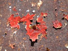 no belief (nightcloud1) Tags: red abstract belief disaster nizza nobelief clashingworlds