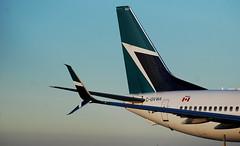 Westjet 737-800 taxiing onto 06L at YYZ. (alzak5) Tags: boeing boeinglovers boeing737 boeing737800 boeing738 b737 b737800 b738 737 737800 738 yyz cyyz toronto torontopearson pearson pearsonpov megashot megaplane instagramaviation instaplane avgeek avnerd aviationgeek avgeeknerd aviation aviationphotography megaaviation