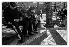 at Manly Beach, Sydney  #072 (lynnb's snaps) Tags: bw400cn manly rollei35s bw beach film street 2016 kodak sydney 35mm blackandwhite contrejour benchseat people 40mm zeiss40mmf28sonnar v700 blackwhite bianconero noiretblanc monochrome schwarzweis biancoenero 黒と白 bianconegro analogue analog lynnburdekinphotography 35mmfilm