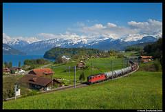 SBB Cargo 11182, Einigen 29-04-2016 (Henk Zwoferink) Tags: sbb cargo bern re uc 44 henk spiez zwitserland einigen re44 11182 buurtgoederen zwoferink