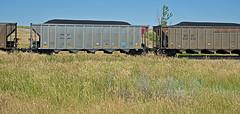 BNSF 653354 coal hopper-Orellia, Nebraska. (Wheatking2011) Tags: bnsf 653354 coal hopper railroad orellia nebraska hill september 2002