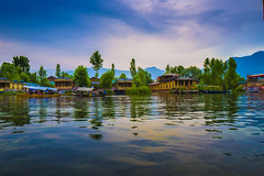 Dal Lake... (mehtasunil) Tags: storm haven houseboat kashmir srinagar leicacamera dallake indiapictures leicalens leicaq leicaforum leicaimages leicaindia indiashutterbugs