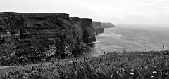 The Cliffs of Moher (Box of Badgers) Tags: europe ireland cliffsofmoher burren countyclare cliff water grass ocean bw blackandwhite blackwhite