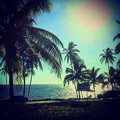 Summer time (akire XII) Tags: summer paradise sun sunny sunrise cars beach ocean sean view road palms