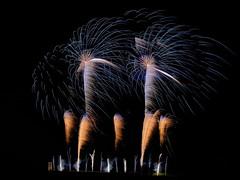 Palm Trees made of Fire (W_von_S) Tags: palmtreesmadeoffire palmen trees feuerwerk fireworks light licht werner wvons sony a700 ebersberg bavaria bayern volksfest kermis outdoor night nightshot nacht nachtaufnahme longexposure langzeitbelichtung wind