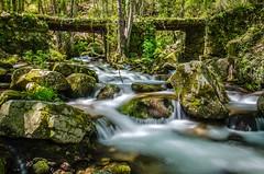 Water in Springtime (DanielSan_05) Tags: water flowing longexposure salamanca spain mountains silky bridge rocks nature green spring springtime
