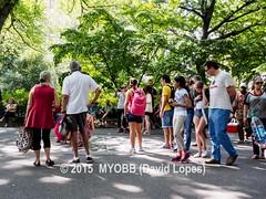 NYC Central Park 2014-8100397 (myobb (David Lopes)) Tags: calvertvaux centralpark em1 fredericklawolmsted manhattan nyc newyork newyorkcity omd olympus usa day green nature park summer
