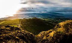 IMG_6868 (JOAQUIM PHOTO) Tags: aores azores portugal vert clouds paysages atlantique ocean le ilha sao miguel volcan aqueduc