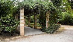 Pergola Path South Entrance (gliak00) Tags: athens greece nationalgardens park path pergola plant tree athina atticaregion