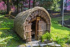 Harry_31439,,,,,,,,,,,Formosan Aboriginal Culture Village,Nantou (HarryTaiwan) Tags:           formosanaboriginalculturevillage nantou     harryhuang   taiwan nikon d800 hgf78354ms35hinetnet adobergb