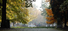 Jesienne muzy (klio2582) Tags: bytom park autumn fall october afternoon sculpture tree yellow brown leaves playground