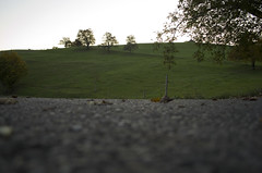 from the road to the Hill (hl82) Tags: road hills hill hgel strasse green schweiz swizerland nature