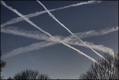 _SG_2014_11_6053_IMG_6489 (_SG_) Tags: blue sky signs contrail spuren himmel trail condensation blau streifen