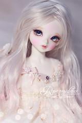 Christmas Vampire (tzeki_natalie) Tags: doll vampire bjd hucky peakswood