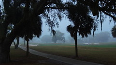 Fog on the course. (Jim Mullhaupt) Tags: trees winter wallpaper vacation mist grass weather fog clouds golf palms landscape evening nikon play wind florida dusk course coolpix recreation february oaks img bradenton elconquistador fairways manateecounty p510 mullhaupt