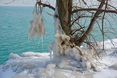 IMG_1979.JPG ((Jessica)) Tags: winter lake chicago ice lakemichigan lakeshore lakefront winterwonderland museumcampus iceformations chiberia