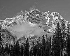 Snow Capped B&W (DASEye) Tags: bw mountain snow mountains landscape nikon alberta banff banffnationalpark bwlandscape natureinbw davidadamson daseye