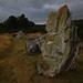 Megaliths at St Just, Brittany
