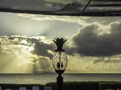BIG.0138.06032014.P3061148 (PhotoCineast) Tags: usa digital ed hawaii olympus maui omd 128 em1 royallahainaresort mzuiko 12‑40mm
