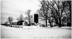 Back road farm_DSC1910 photoshop NIK edit 2 (nkatesphotography) Tags: snow nature landscape outdoors barns scenic farms