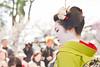 Maiko (GGG 3) Tags: portrait woman girl beauty festival japan lady kyoto event maiko geiko geisha 日本 kitano kimono tradition 北野天満宮 着物 イベント tenmangu baikasai 京都市 京都府 舞子 芸子 上七軒 梅花祭 野点 kamisitiken 大茶湯