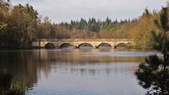 The Five Arch Bridge (Topspotter75) Tags: bridge lake architecture scenic virginiawater