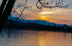 Abendliche Stille am See (JoCo6299) Tags: trees light sunset sun mountain lake tree canon landscape eos austria see abend licht sterreich sonnenuntergang sigma krnten carinthia berge landschaft sonne bume schatten efs baum stimmung abendstimmung badestrand wrthersee edelweis prtschach 70d 1750mm lakewrth 1750mmf28oshsm