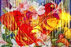 my Valentine (LotusMoon Photography) Tags: flowers art digital photomanipulation photoshop heart artistic creative valentine textures photomontage layers