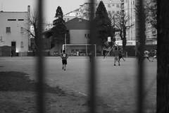 El Diez (stefanomorandi) Tags: blackandwhite italy milan ball football italia milano soccer passion napoli maradona calcio passione dieci eldiez approvato