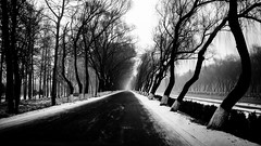 The Wintry Road (thranth) Tags: china road winter blackandwhite bw white snow black ice monochrome landscape lumix canal beijing panasonic m43 gf1 microfourthirds 20mmf17 panasonic20mmf17
