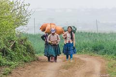 Đường về Pa Phách (A n h H u y) Tags: road nikon streetlife return hmong mocchau 55300vr d7000