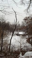 IMG_20150303_150207_417 (ShellyS) Tags: nyc newyorkcity winter snow centralpark manhattan parks