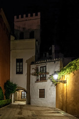 Nocturna de la Judera (Javier Martinez de la Ossa) Tags: street espaa night sevilla andaluca spain seville nocturna farol andalusia balcn macetas barriodesantacruz juderia nikond700 nikkor2470 javiermartinezdelaossa callejondelajudera