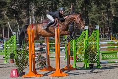 Le Grand Parquet (Pierre ESTEFFE Photo d'Art) Tags: france sport cheval course concours obstacle saut militaire fontainebleau équestre seineetmarne77 grandparquet