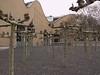 frankfurt_fz50_1140663 (Torben*) Tags: trees lumix frankfurt panasonic bäume frankfurtammain fz50 rawtherapee