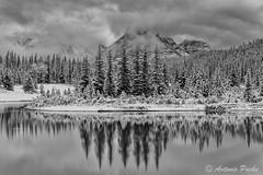 Fros Reflejos. (Antonio Puche) Tags: blackandwhite snow blancoynegro reflections landscape rockies nikon nieve paisaje alberta canad reflejos banf cascadeponds nikon247028 nikond800 antoniopuche