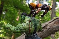 First Blood (nobudius_5192) Tags: xmen figure marvellegends hulk wolverine marvelselect