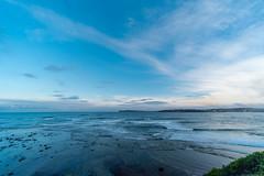 M1140398.jpg (meerecinaus) Tags: longreef beach collaroy newsouthwales australia au