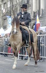 Gaucho elegante (Adri T fotografas) Tags: bicentenario desfile gaucho avenidademayo festejobicentenarioindependencia buenosairesbicentenario desfilebicentenario independencia argentina bacelebra