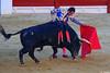 El Fandi, Feria de la Hogueras (Fotomondeo) Tags: elfandi davidfandila matador toro toros torodeosborne corridadetoros bull bullfight bullfighter bullring torero alicante alacant españa spain hoguerasdesanjuan fogueres