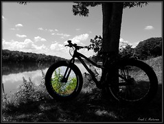 """The Grass is Greener... (""""Just an ol' nature boy takin' a picture"""") Tags: motobecane boris x7 bike bicycle rock river riverbank shore shoreline tree trees cloud clouds sky weed weeds grass nature castle state park ogle county il illinois ride riding"""