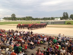 (ladybugdiscovery) Tags: rcmp royal canadian mounted police horses musical ride musicalride dresden officers riders red black