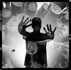 Out of the woods (Bregg) Tags: selfportrait film lomolubitell166u kodaktmy blackandwhite monochrome doubleexposure silhouette trees trunks