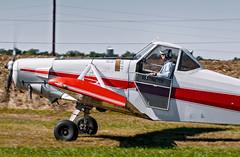 N6112Z 1960 PIPER PA-25 PAWNEE -   VSA 7 (massey_aero) Tags: vintagesailplaneassoc sailplane glider vsarally pa25 pawneepiper piperpawnee glidertowplane masseyaerodrome masseyairmuseum vsarallyatmassey