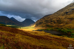 Break of light (w.mekwi photography [here & there]) Tags: rays autumn scotland forest cloudy trees outdoors glencoe colours uk wmekwiphotography nikond800 light