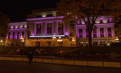 Palais-Montcalm-2 (Alan McCollough) Tags: halloween cityhall hotel de ville smog pink breastcancer
