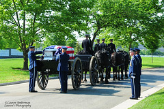 ARL_2509-s (lauren3838 photography) Tags: lauren3838photography laurensphotography nikon d700 funeral arlington arlingtonnationalcemetery military airforce caisson horses usa flag veteran casket cia pilot va virginia cemetery soldiers burial